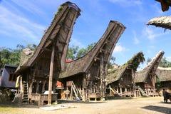 传统房子在塔娜Toraja, Sulewesi 免版税库存图片