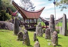传统房子在塔娜Toraja, Sulewesi 库存图片