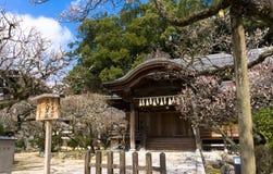 传统日语在Dazaifu祀奉,神道的信徒的寺庙 图库摄影