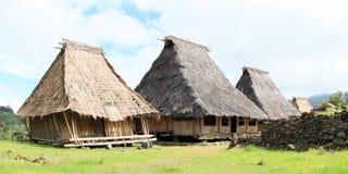 传统村庄在露天博物馆在Wologai 免版税库存图片