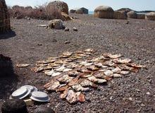 传统村庄,图尔卡纳湖,肯尼亚 免版税图库摄影