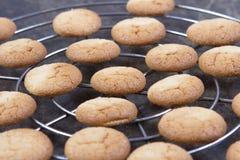 传统法国的蛋白杏仁饼干 免版税图库摄影