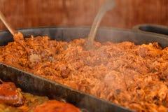 传统波兰盘、德国泡菜和肉炖 免版税库存照片