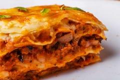 传统烤宽面条做用剁碎的牛肉博洛涅塞调味汁 库存照片