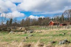 传统瑞典红色议院和篱芭 免版税库存照片