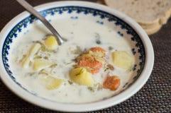 传统黄瓜波兰的汤 免版税库存图片