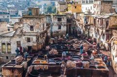 传统皮革皮革厂在菲斯,摩洛哥 免版税库存照片
