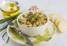 传统盘肉饭用肉、米和菜 在白色 库存图片