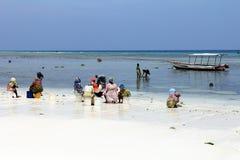 传统礼服的非洲妇女在海滩 免版税库存照片