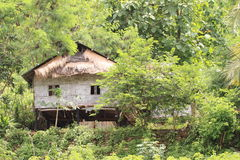 传统竹房子 图库摄影