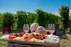 传统罗马尼亚食物b的板材用酒和葡萄园 免版税库存照片