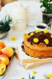 传统自创巧克力蛋糕 土气样式和自然锂 免版税图库摄影