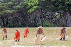 传统舞蹈在瓦努阿图,密克罗尼西亚,南太平洋 免版税库存图片