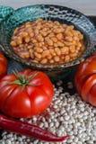 传统英国食物-在西红柿酱的被烘烤的白豆和 库存照片