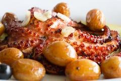 传统葡萄牙盘章鱼 库存图片