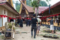 传统葬礼在塔娜Toraja 免版税库存图片