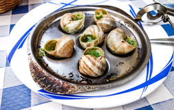 传统蜗牛用大蒜黄油 图库摄影