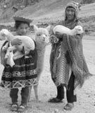 传统衣物的未认出的孩子 库存照片