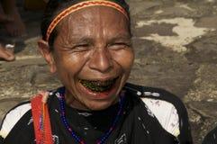 传统衣裳的妇女使用beatlenut 库存照片