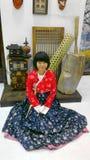 传统衣裳的韩国妇女 库存图片