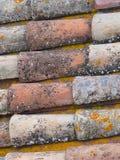 传统铺磁砖的屋顶在普罗旺斯法国 免版税库存照片