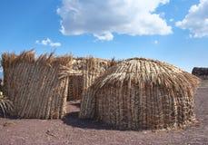 传统非洲小屋,图尔卡纳湖在肯尼亚 免版税库存图片