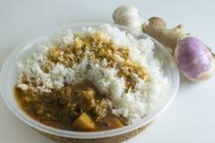 传统马来西亚烹调牛肉咖喱和蒸的米 库存照片