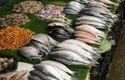 传统鲜鱼销售在印度尼西亚拍的照片 库存照片