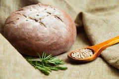 传统黑麦家制面包 免版税库存照片