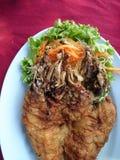 传统Defination鱼泰国的食物 图库摄影
