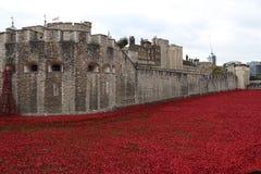 伦敦塔和鸦片设施 免版税库存图片