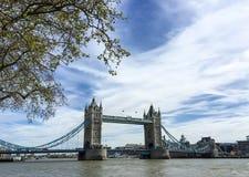 伦敦塔桥梁,英国 库存照片