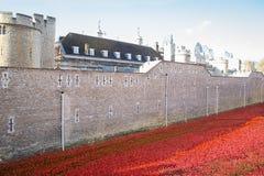 伦敦塔- 2014年10月11日 陶瓷鸦片设施 免版税库存图片