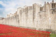 伦敦塔- 2014年10月11日 陶瓷鸦片设施 库存照片