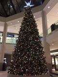伦敦安大略加拿大 在Masonville购物中心的一棵巨型的圣诞树 免版税库存图片