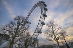 伦敦眼泰晤士河 库存图片