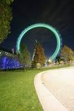 伦敦眼睛,千年轮子 免版税图库摄影