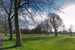 伦敦西哈姆公园在春天 库存照片