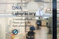 伦敦,英国,自然历史博物馆-实验室细节 免版税库存图片