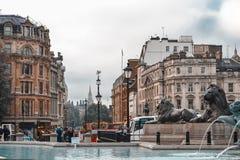 伦敦,英国, 2014年9月20日,一个多雨早晨 狮子在Trafal 免版税库存图片