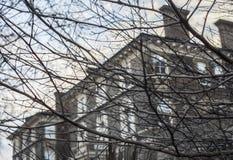 伦敦,英国-大厦街道通过分支 免版税库存照片