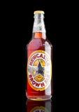 伦敦,英国- 2016年11月01日:冷的瓶新堡布朗强麦酒啤酒 在1927年发射由吉姆Porter上校在合并o以后 库存照片