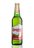 伦敦,英国- 2017年3月30日:瓶在白色,其中一的百威Budvar啤酒最高的销售的啤酒在捷克 库存图片