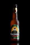 伦敦,英国- 2017年6月9日:瓶在黑色的Magners原始的爱尔兰萍果汁 库存图片
