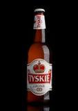 伦敦,英国- 2017年3月23日:瓶在黑色的Tyskie啤酒 yskie啤酒在1629年首先酿造了并且位于波兰 免版税库存图片