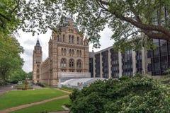 伦敦,英国- 2016年6月18日:自然历史博物馆,伦敦惊人的看法  免版税库存照片