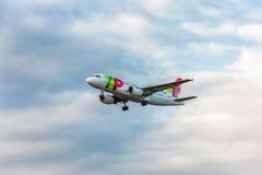 伦敦,英国- 2016年8月22日:CS-TTK葡萄牙航空公司空中客车A319着陆在希思罗机场,伦敦中 免版税库存照片