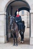 伦敦,英国12月6日:Horseguard 免版税库存照片