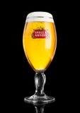 伦敦,英国- 11月29日 史特拉Artois啤酒2016冷玻璃杯在黑背景,安海斯布希InBev突出的品牌的,是a 免版税图库摄影