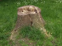 伦敦Gunnersbury公园英国风景公园 库存图片